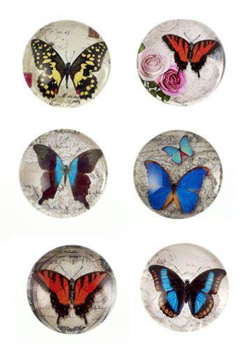 Butterfly Resin Magnet - Grab Bag Surprise! |
