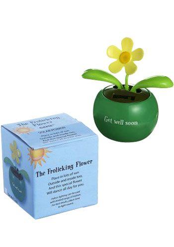 Get Well Soon Flowers - Dancing Flower Pot