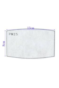 PM2.5 Meltblown Filters for Face Masks | CE Certified | 10 Pack |