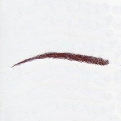 Temporary eyebrow tattoos 17 for cancer alopecia and hair for Temporary eyebrow tattoos