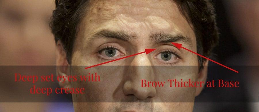 trudeau-false-brows