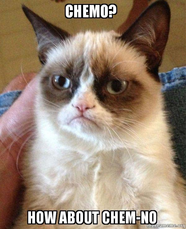 Chemo? How about chem-no grumpy cat meme