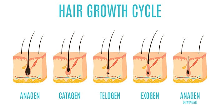 How to Make Hair Grow Faster: The Hair Growth Cycle