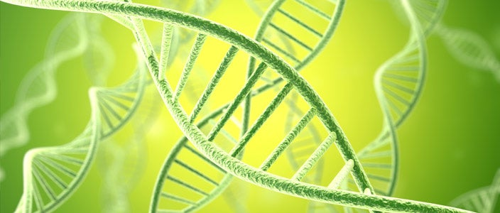 Breast Cancer Breakthrough: Genes linked to breast cancer