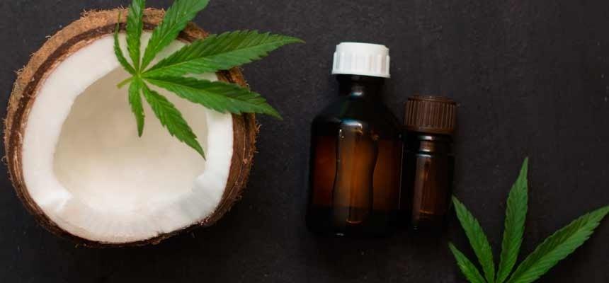 hemp coconut oil