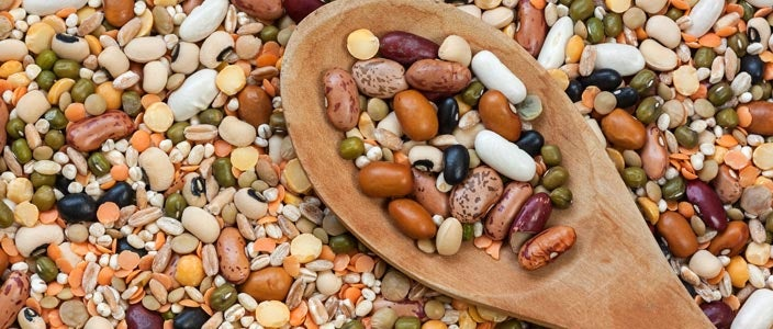 Foods to Eat on a Plant Based Diet: Legumes